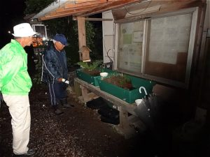 ほっと蛍の里 埼玉県羽生市 ホタル観賞会 ホタルの幼虫が光るのを見れる